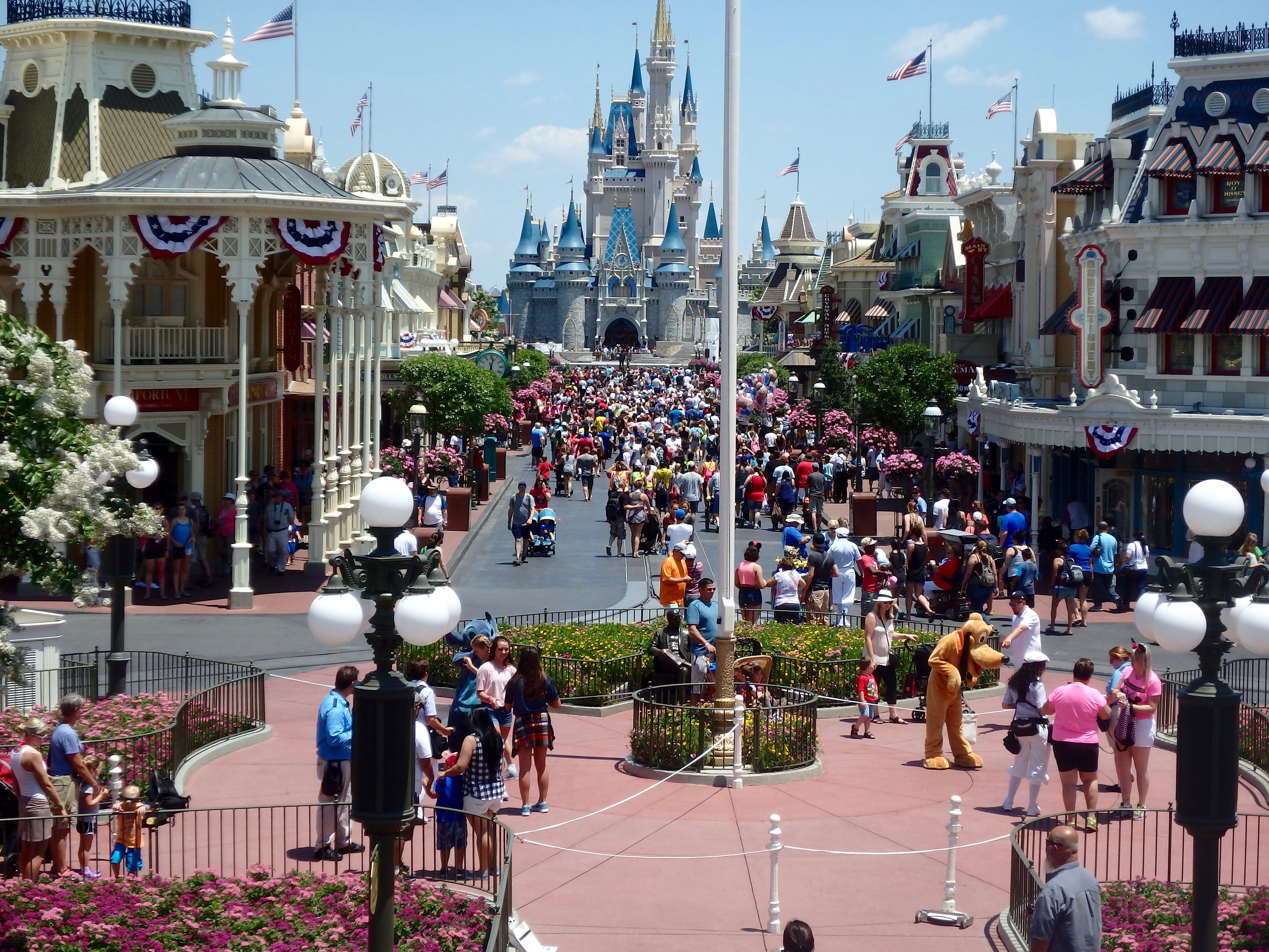 Find out which Disney Program is best for you as a Canadian!